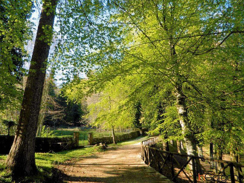 Gargano | Foresta Umbra
